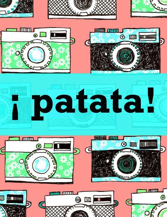 cameras-guillerminaferreblog